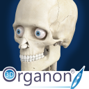 3D Organon Anatomy - Skeleton Bones and Ligaments icon