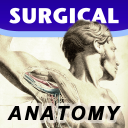 SurgicalAnatomy icon