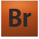 Adobe Bridge CS4 icon