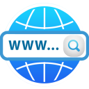 Domain Check icon
