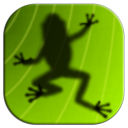 Ancient Frog icon