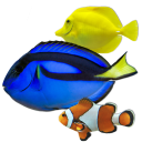 BluScenes Coral Reef Aquarium HD icon