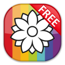 Color by Numbers - Flowers - Free icon