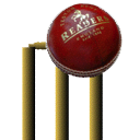 Cricket 3d v4.0 icon