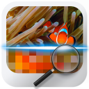Similar Image Detector icon