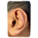 Dolce Ear Training icon