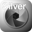 SILVER projects professional icon