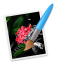 Color Brush - Work of Art icon