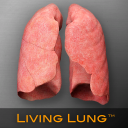 Living Lung icon