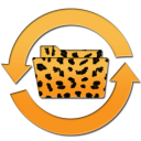 Cheetah Sync icon