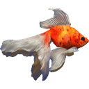 Goldfish Aquarium icon