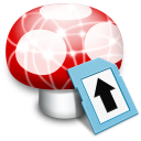 Wii Transfer icon