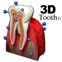 3DToothSt icon