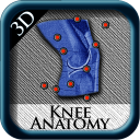 KneeAnatomy icon