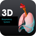 3D Respiratory System icon