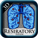 3D Respiratory System Pins icon