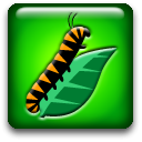 Mapwing Creator icon