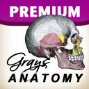 GraysAnatomy icon